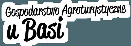 Gospodarstwo agroturystyczne u Basi Kaszuby. Domek pokoje na wynajem